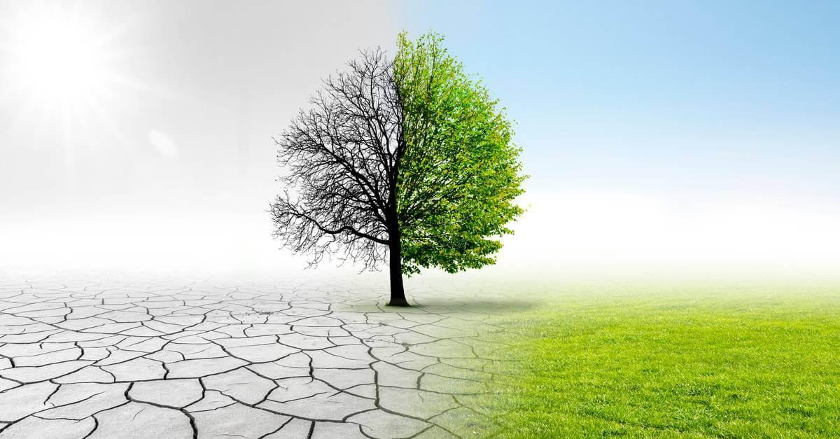 Photovoltaik Investment Klimawandel
