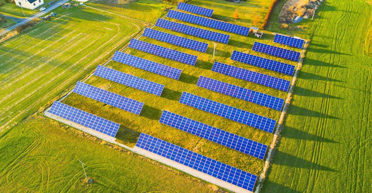 Feld-verpachten-für-Solar